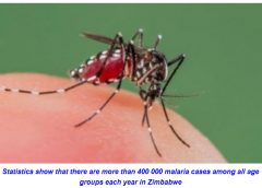 Divisions over efforts to fight malaria stall progress